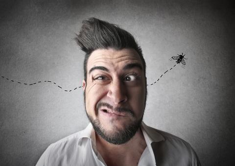 חרק באוזן: איך זה קורה ומה עושים?